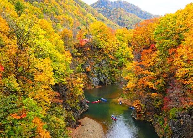 홋카이도 단풍 여행 - 홋카이도의 가을을 느낄 수 있는 단풍명소 4곳
