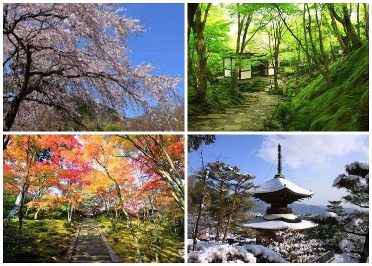 【京都嵯峨野・嵐山】輝映四季的光影交錯之美「常寂光寺」