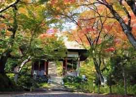 紅葉間灑落的優美光線~常寂光寺:京都嵐山的賞楓景點!