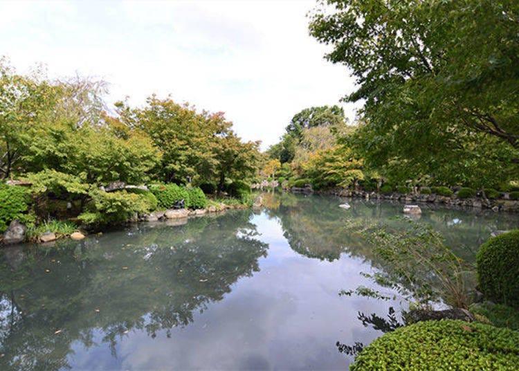愛上東寺園區內,將庭園染上豔紅的楓葉及五重塔的對比色