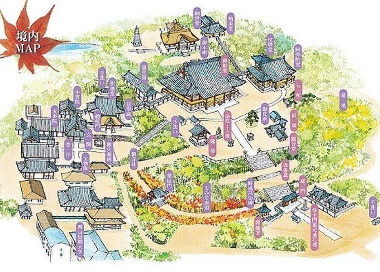 京都「光明寺」的寺廟導覽出發!