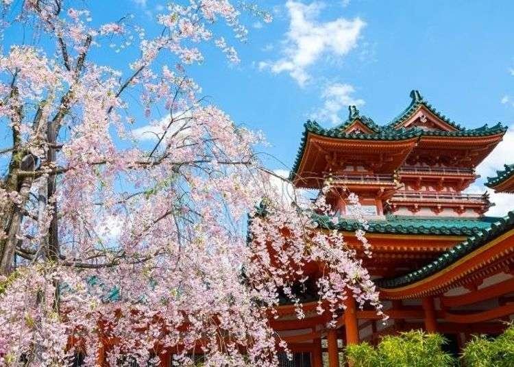 헤이안진구 옛 도읍의 영광을 전하는 신전과 백 년의 자연이 숨쉬는 정원을 거닐다