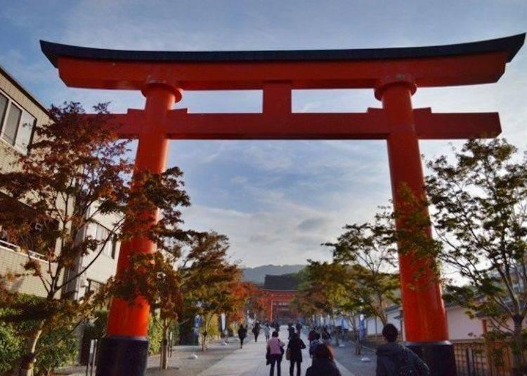 Fushimi Inari's Grounds are a Melting Pot of Tourists