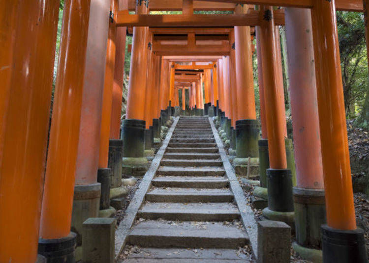 The Path of Wishes and Prayers beyond Senbon Torii