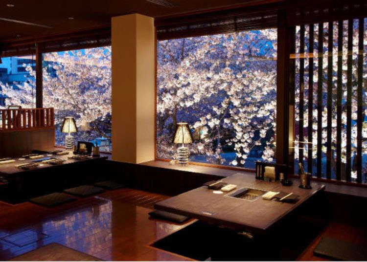 京都・賞櫻餐廳決定版!東山~四条河原町地區邊賞櫻邊享受美食的餐廳3選
