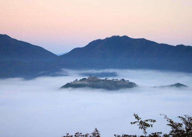 효고 다케다 성터의 절경을 만끽! 일생에 한 번쯤은 경험해야 할 '천공의 성'에서의 환상적인 풍경.