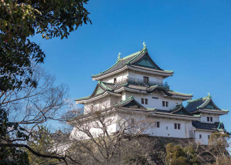 Exploring Wakayama Castle: Best photo spots, tips and more!
