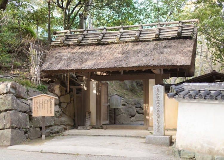 Bonus attraction No. 1: Enjoying the scenic Nishinomaru Teien Garden