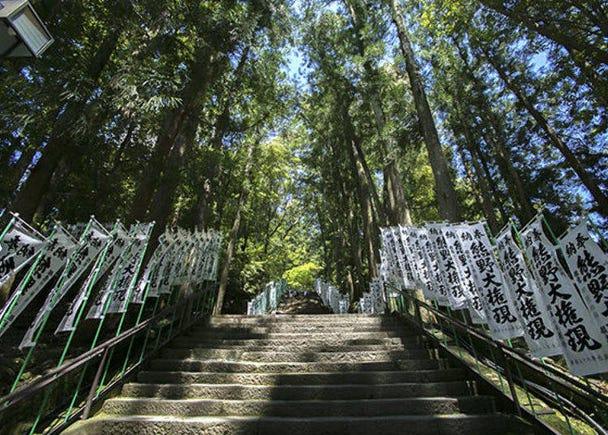 The majestic appearance of the Kumano Hongu Grand Shrine