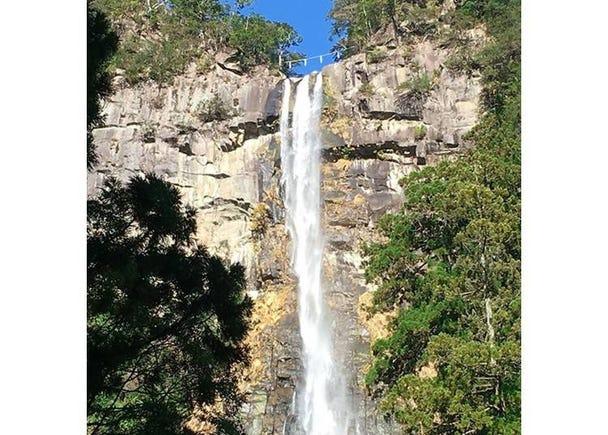 Powerful Nachi Falls