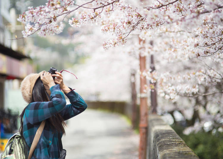 What to Wear in Osaka in Spring: Clothes, Outfits and Accessories