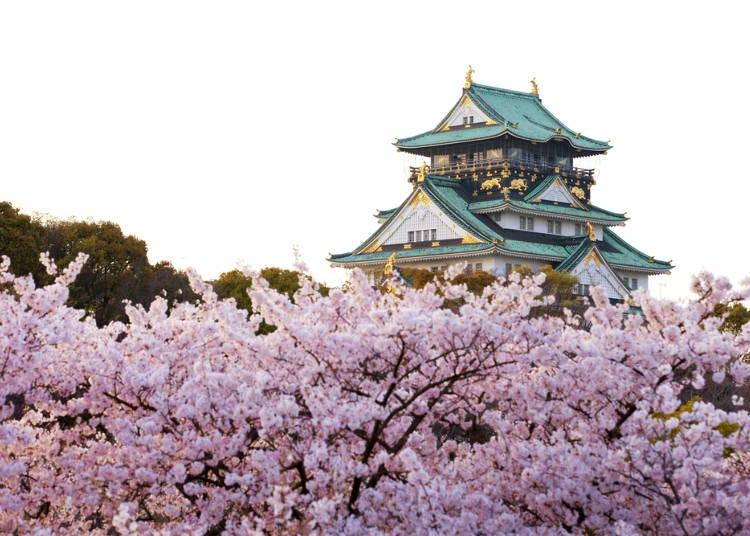 関西エリアの春(3~5月)の気温・天気