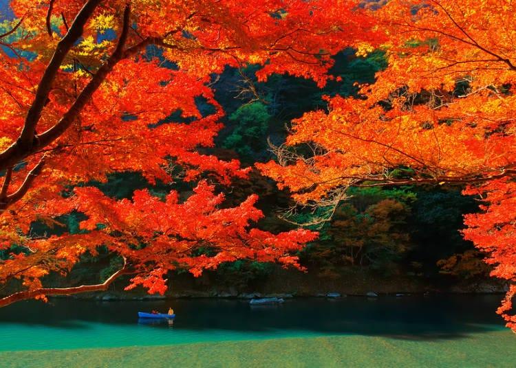 関西エリアの秋(9~11月)の気温・天気