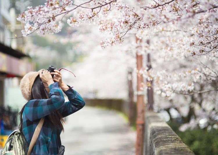 간사이 지역, 봄(3~5월) 복장과 소지품