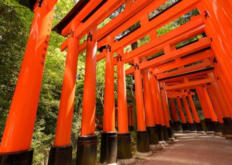 必去的京都名胜「伏见稻荷大社」