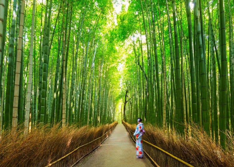 有着美丽竹林的「岚山」也不容错过