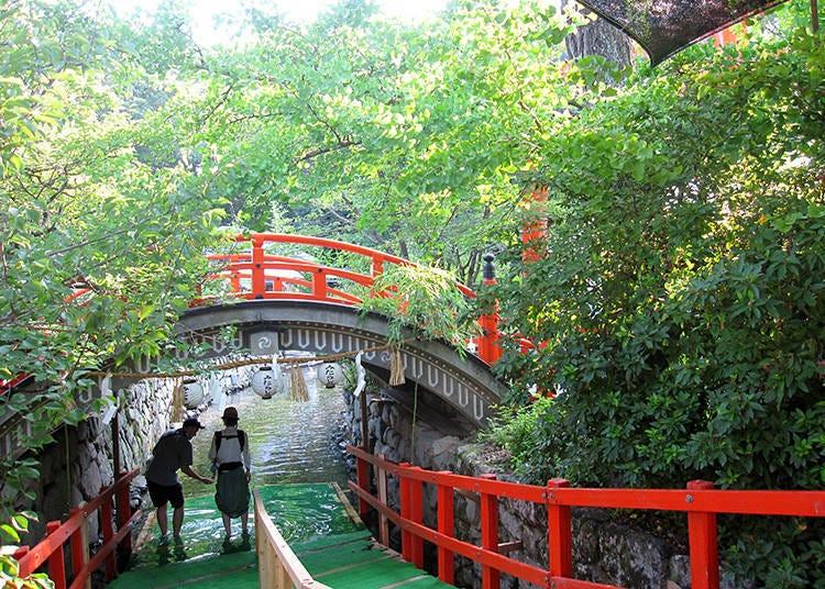 Purification in a cold pond: Mitarashi Matsuri