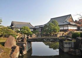 京都 二条城まるわかりガイド ~かつて将軍が生活した世界遺産~