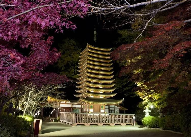 라이트업도 아름다운 서쪽의 닛코