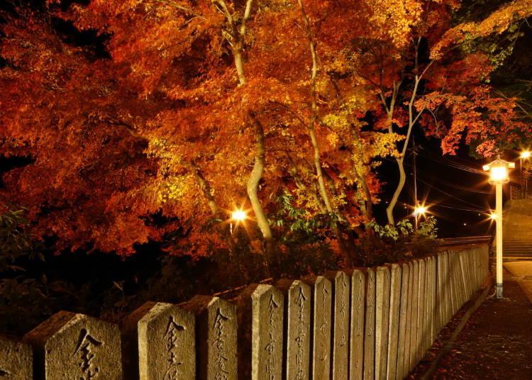 벚꽃의 명소 '요시노야마'산은 가을에는 단풍 명소로