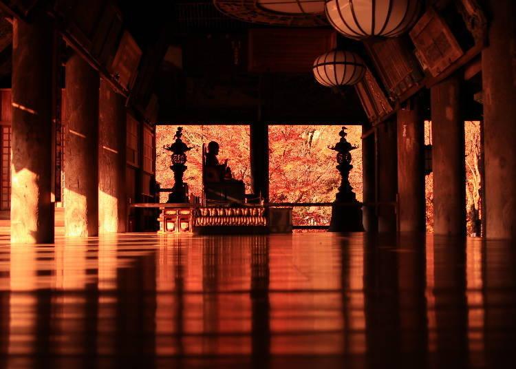 奈良賞楓葉景點④色彩繽紛的「長谷寺」楓葉