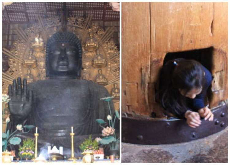 Todai-ji Temple: Home to the Great Buddha of Nara - And a Nose Hole That Brings You Luck!?
