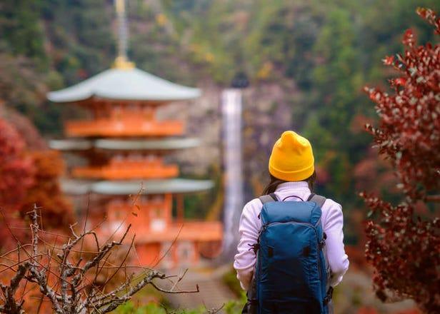 第一次和歌山自由行就上手!特色景點、美食、伴手禮懶人包