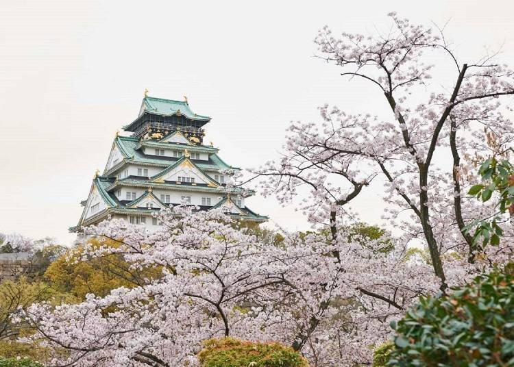 3. Osaka Castle Park: Interwoven Scenery of the Castle and Cherry Blossoms