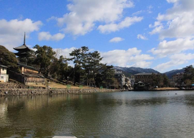猿沢池越しの「興福寺五重塔」は記念写真の定番