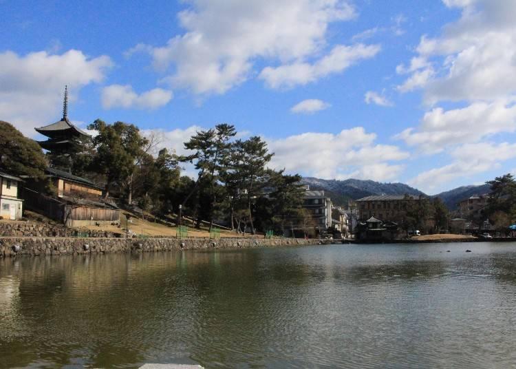 隔著猿澤池的「興福寺五重塔」景色是必拍的紀念照