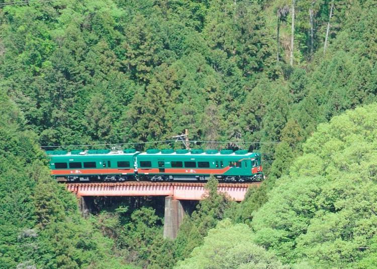 3. Tenku: Head to Mt. Koya with The Nankai Electric Railway's sightseeing train!