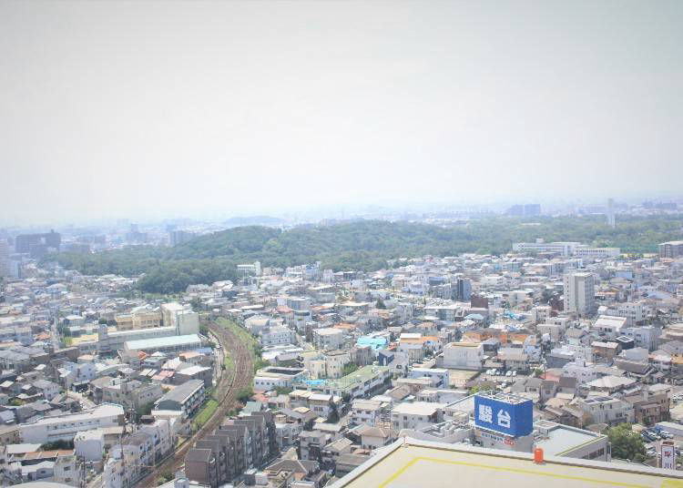 Get an overall view of Osaka Mozu Tombs from Sakai City Hall's observation lobby