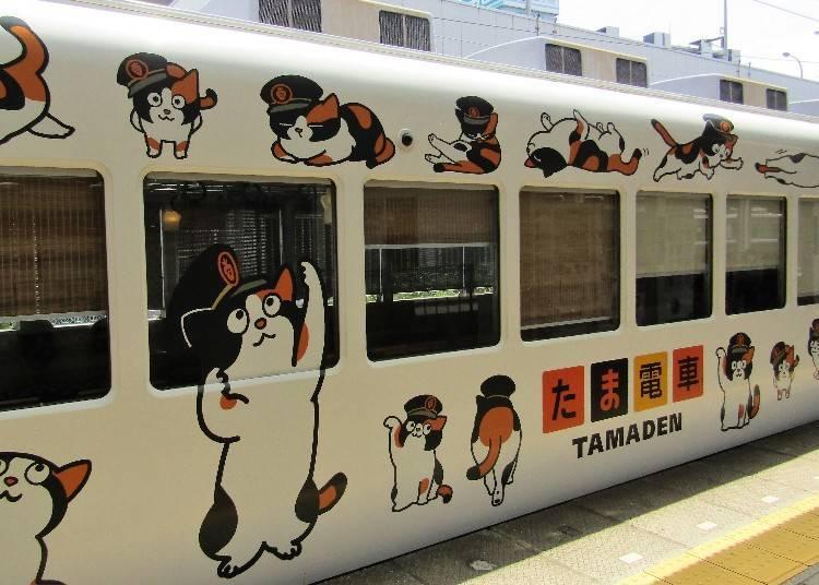 게다가 타마 역장을 모티브로 한 그 이름도 '타마 전철'도 운행 중이다!