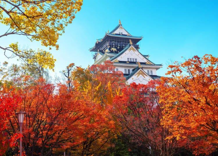 1. (Osaka) Osaka Castle Park: Autumn Foliage with the Beautiful Castle Tower