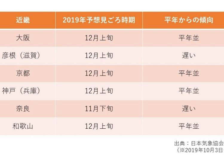 2019年、関西の紅葉は12月上旬が見頃⁉