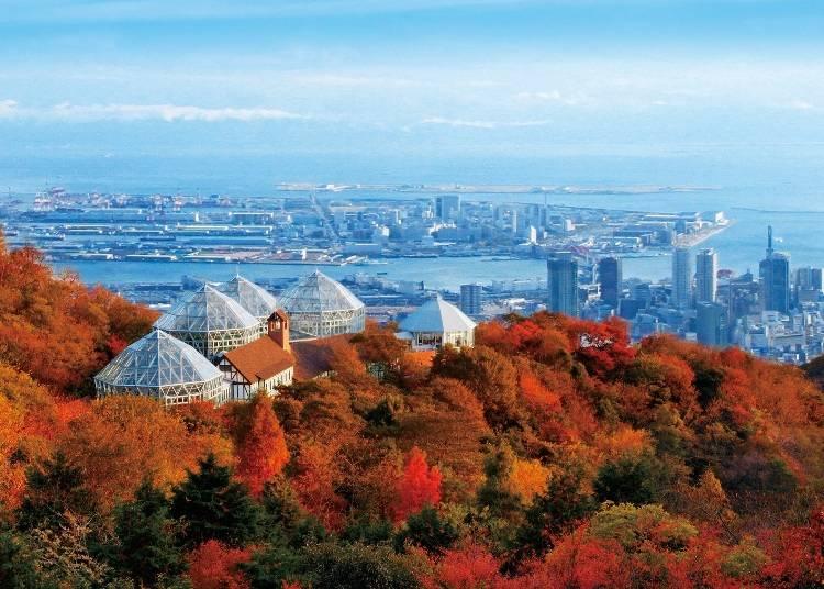 6.空中散歩で紅葉を一望「神戸布引ハーブ園/ロープウェイ」【兵庫】