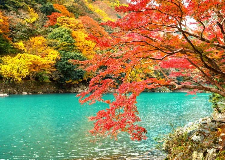 關西賞楓景點④京都:賞楓必去景點「嵐山」