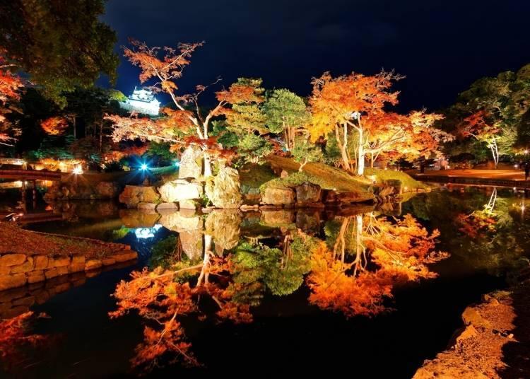 關西賞楓景點⑤滋賀:被夜間點燈點綴的名勝「玄宮園」