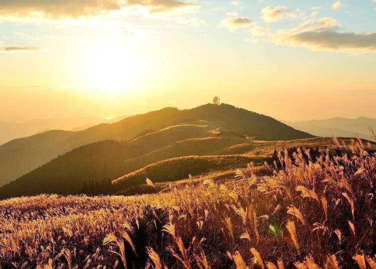 Japan Holiday: The Mystical Charms of Kimino, Wakayama