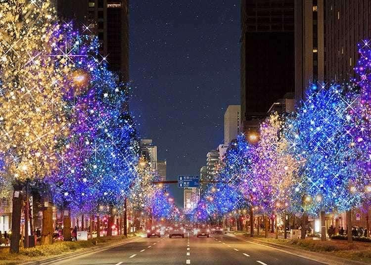 Five of Kansai's Top Winter Illumination Spots for 2019-2020