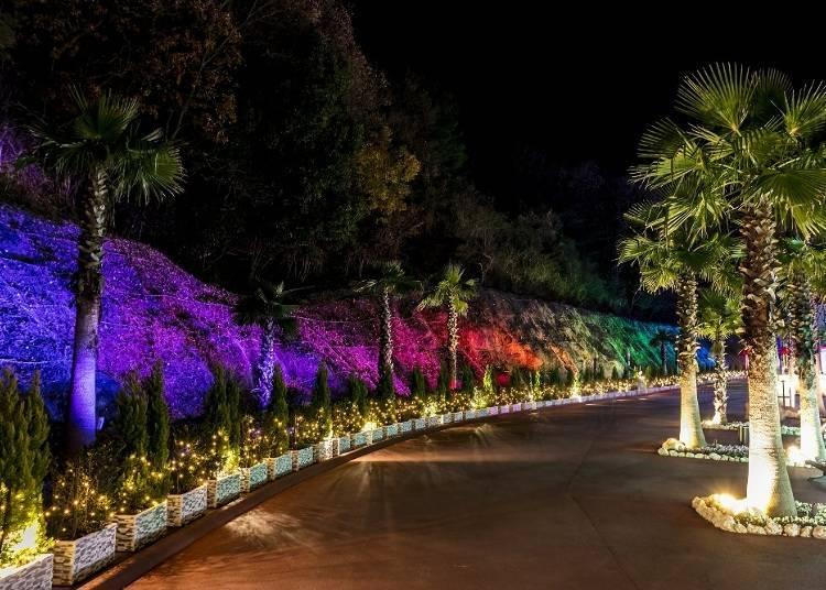 1. 스펙터클 쇼가 끝없이 펼쳐지는 '네스타 일루미나~ 빛의 산책길~' 【네스타 리조트 고베/효고】