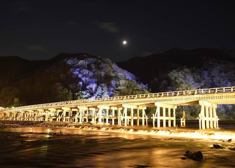 2. 사가・아라시야마의 역사적 문화유산과 자연을 등불로 밝히는 '아라시야마 하나토로' 【교토】