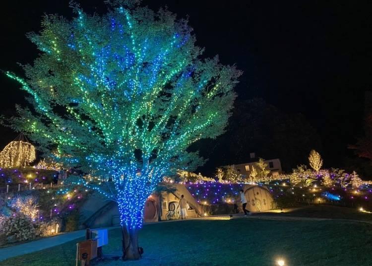 5. 擁有關西規模最大的燈飾活動「Rosa 花園燈飾~光的演奏之丘」【滋賀】