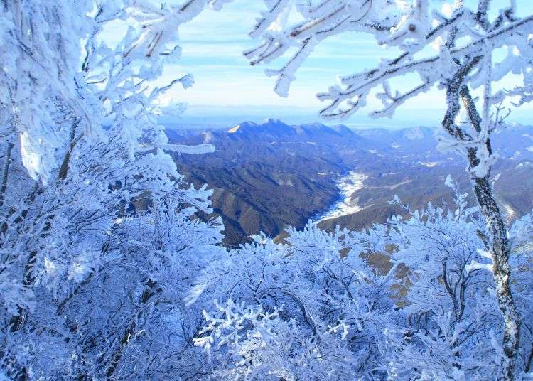 Nara Miuneyama Ice Festival: Japan's Spectacular Winter Event Will Have You Booking Your Trip Now!
