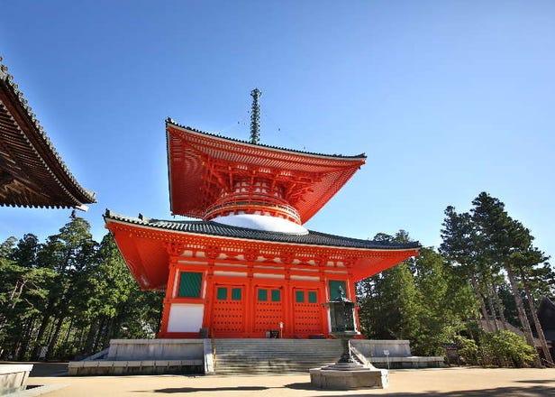 【关西和歌山】世界遗产可以这样玩!高野山「奥之院」一日游、夜间修行疗愈之旅