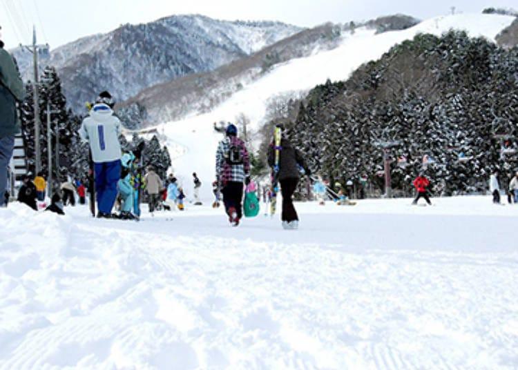 ■4: 효고현 - 간나베 고원 만바 스키장
