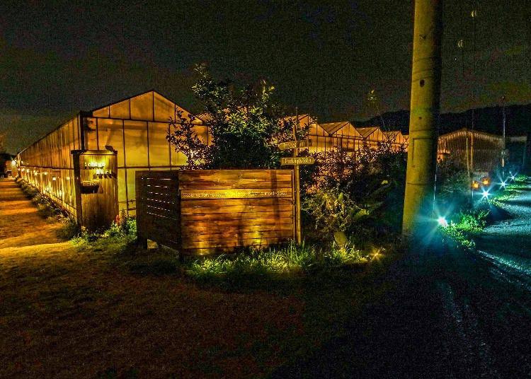 8.ライトアップのいちご園「ベジタブルガーデン」で夜のいちご狩り【滋賀】