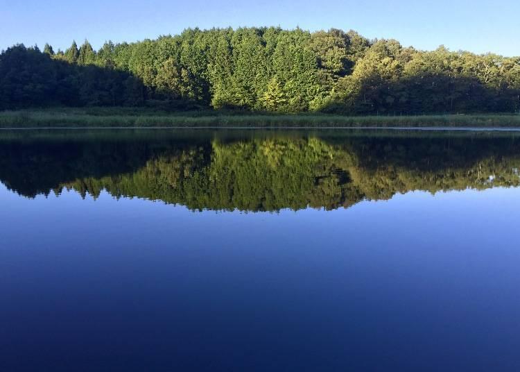 4) Ryūogabuchi (Nara): Hidden scenic pond that perfectly mirrors its surroundings