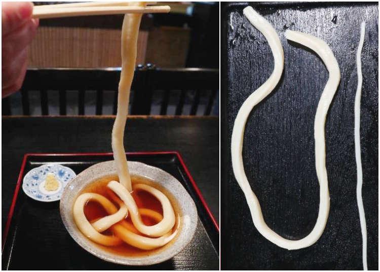 長さと太さにびっくり!京都名物「一本うどん」 気になるそのお味は?【たわらや】