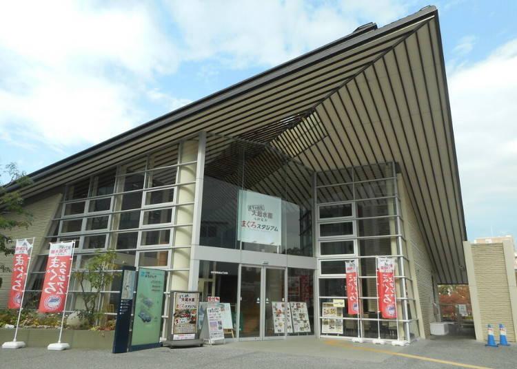 2. Maguro-Stadium: 1,500 yen for a fresh catch of tuna sushi (Tenmabashi)